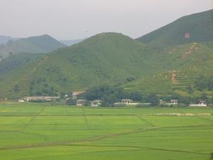 Farms in Guemgangsan