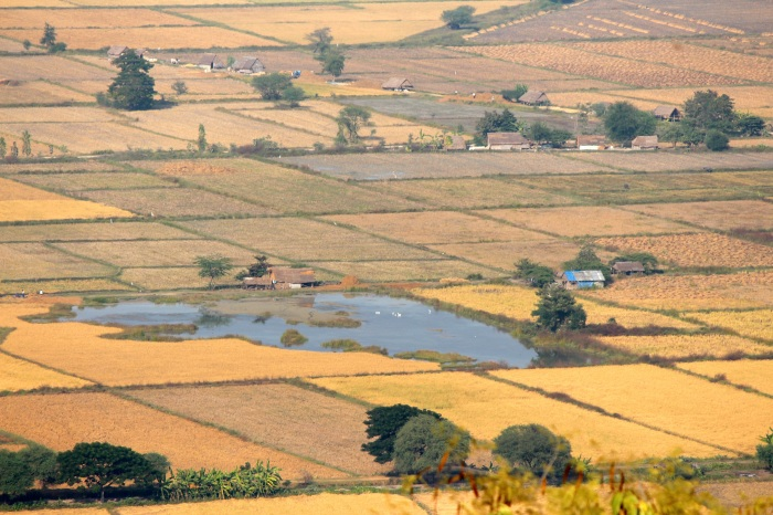 View of farms from Mandalay Hill